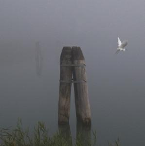 La laguna di Cavallino Treporti in uno scatto di Franco Fontana