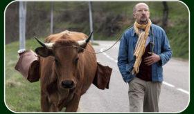 Il contadino Fatah e la vacca Jacqueline. Dall'Algeria a Parigi. Un tenero road movie nel segno dei buoni sentimenti